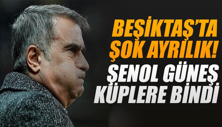 'Beşiktaş'ta şok ayrılık! Şenol Güneş küplere bindi...
