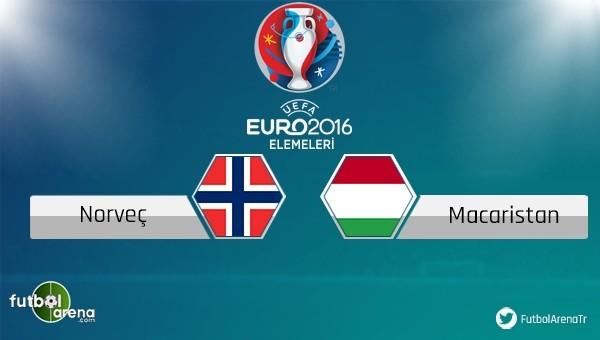 Norveç - Macaristan maçı saat kaçta, hangi kanalda?