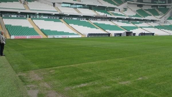 Timsah Arena'nın çiminde kriz! Uzman açıkladı