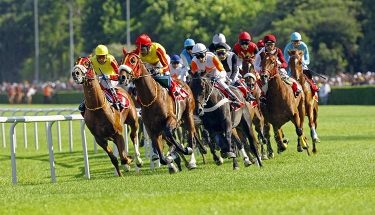 Gazi Koşu'nda yarışacak atlar