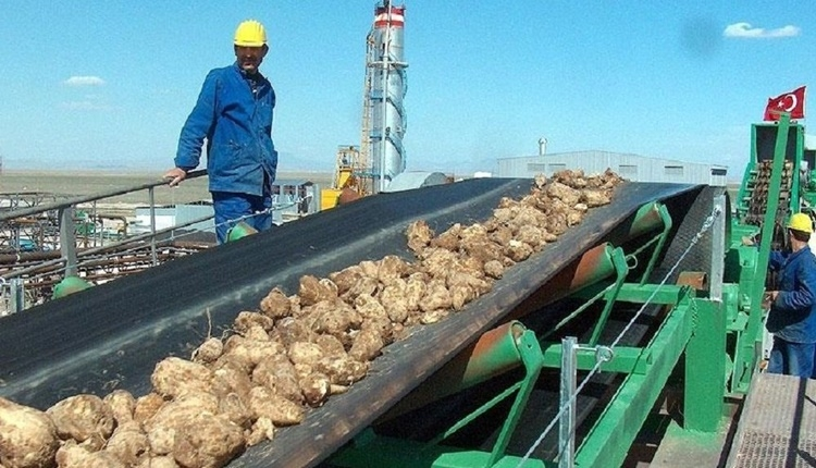 Şeker fabrikaları neden özelleşiyor? Şeker fabrikaları kapandı mı? Alpullu'daki mitingte yaşananlar - Şeker fabrikası haberleri (1 Nisan Pazar 2018)