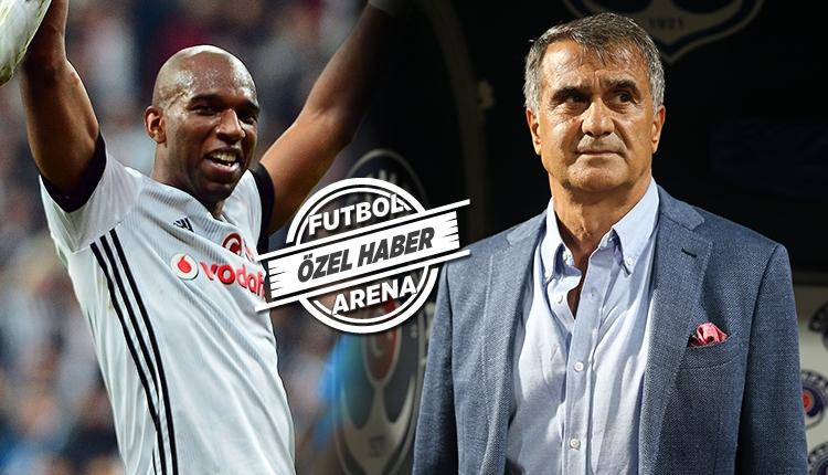 Beşiktaş'ta Şenol Güneş'ten Babel için transfer kararı