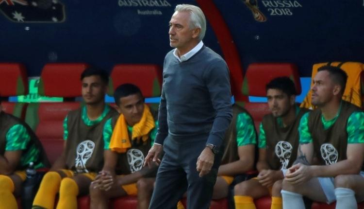 Bert van Marwijk: 'Fransa'ya karşı beraberliği hak etmiştik'