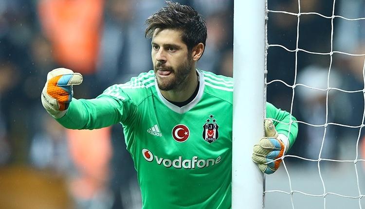 Fulham'a transfer olan Fabri: ''Hayalimdi!''