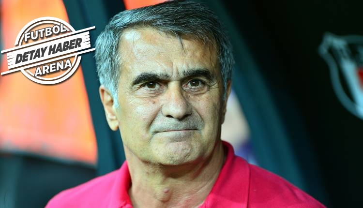 Beşiktaş, Şenol Güneş ile kazanmaya devam ediyor