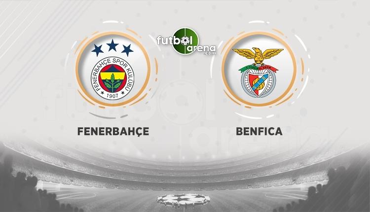 Fenerbahçe - Benfica canlı ve şifresiz izle (Fenerbahçe - Benfica hangi kanalda)