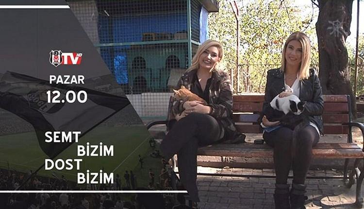 BJK TV'den hayvan hakları için özel program