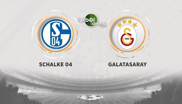 Schalke - Galatasaray canlı izle, Schalke - Galatasaray şifresiz izle (Schalke - Galatasaray bein sports canlı ve şifresiz İZLE)