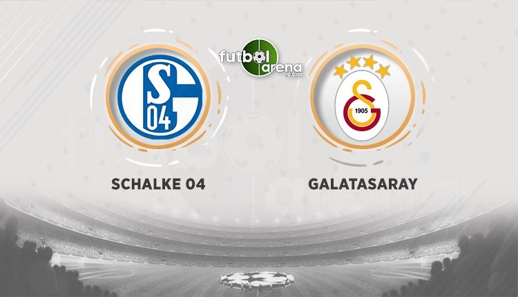 Schalke Galatasaray şifreli mi? Schake Galatasaray şifresiz canlı kanallar (Schalke Galatasaray uydu kanalları)