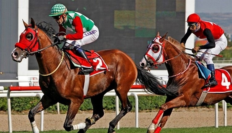 Ankara altılı tahminleri! Orhan Arabacılar'dan müthiş altılı (Ankara atlı izle! At yarışı sonuçları canlı at yarışı 14 Mayıs 2019)