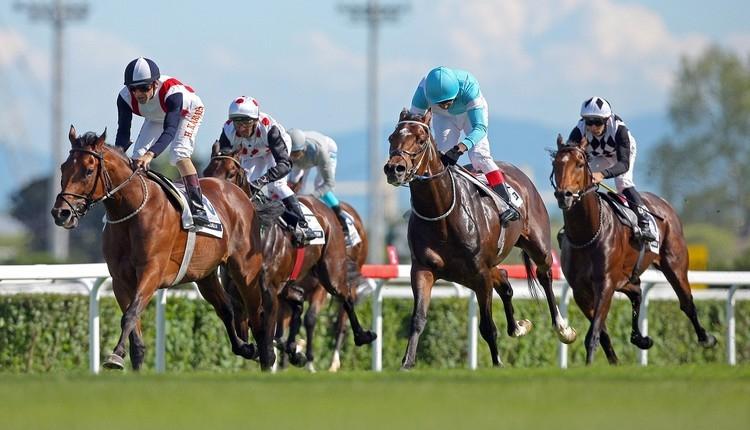 At yarışı tahminleri! İstanbul altılı ganyan canlı İZLE (Orhan Arabacılar altılı kuponu 15 Mayıs 2019)