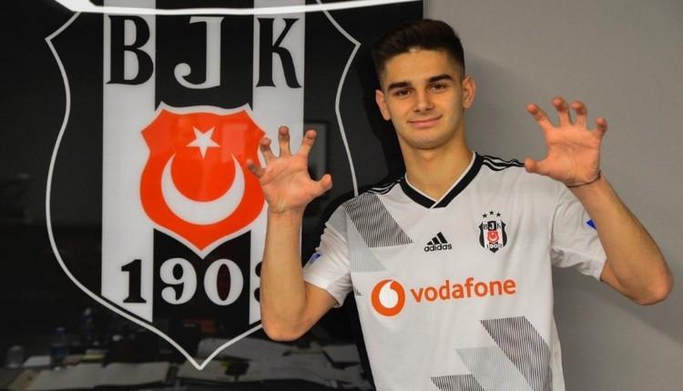 Beşiktaş, Ajdin Hasic ile sözleşme imzaladı