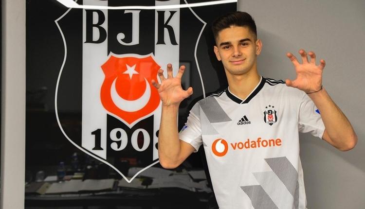 Beşiktaş'a Ajdin Hasic yanıtı: