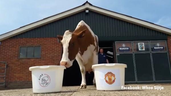 Ajax mı, Manchester United mı?