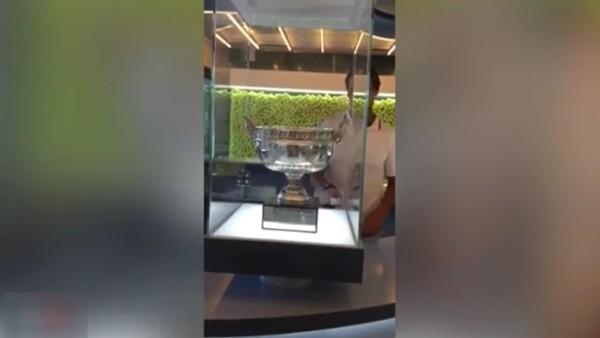 10. Fransa Açık zaferinin kupasını müzeye ekledi