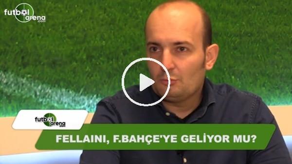 Fellaini, Fenerbahçe'ye geliyor mu?