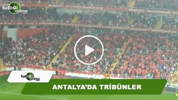 Türkiye - İrlanda Cumhuriyeti maçında tribünler