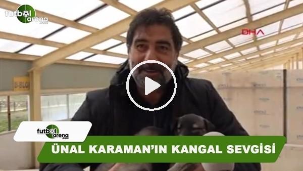 Ünal Karaman'ın Kangal köpeği sevgisi