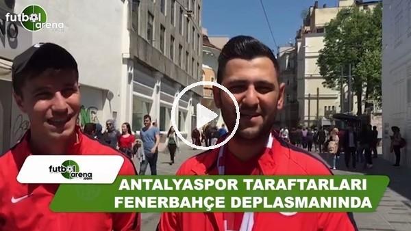 Antalyaspor taraftarları Fenerbahçe deplasmanında