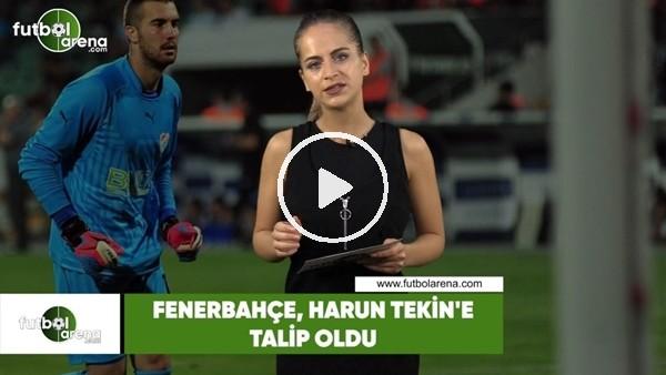 Fenerbahçe, Harun Tekin'e talip oldu