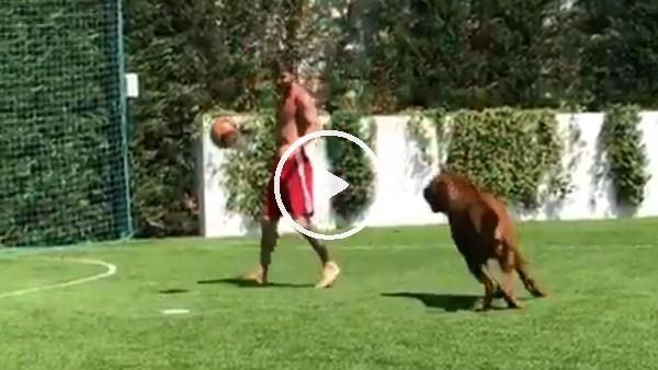 Messi köpeğiyle futbol oynadı