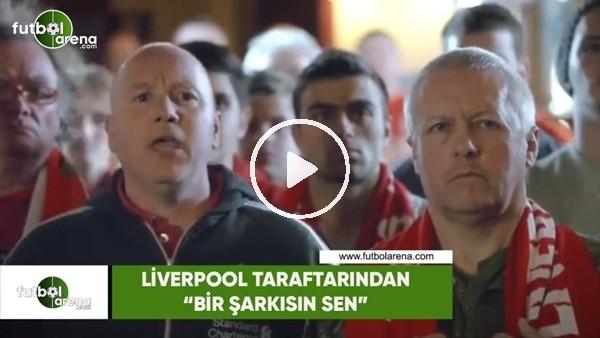 """'Liverpool taraftarından: """"Bir şarkısın sen"""""""