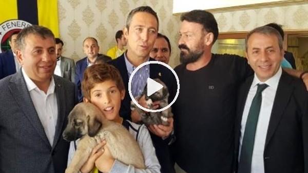 'Ali Koç'a kangal yavrusu hediye edildi