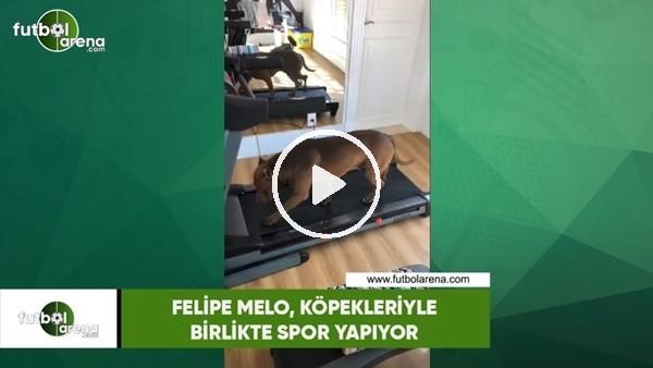 'Felipe Melo, köpekleriyle birlikte spor yapıyor