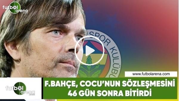 'Fenerbahçe, Cocu'nun sözleşmesini 46 gün sonra bitirdi