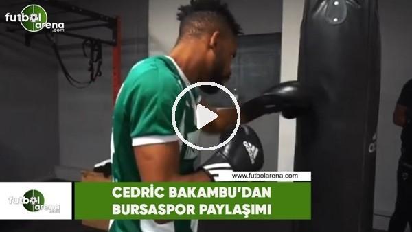 'Cedric Bakambu'dan Bursaspor paylaşımı