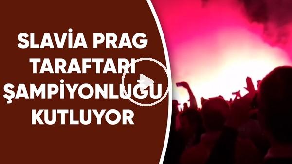 Slavia Prag taraftarı şampiyonluğu kutluyor