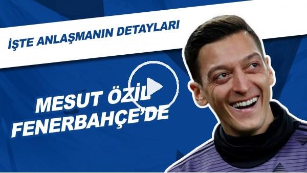 'Mesut Özil Fenerbahçe'de! | İşte Anlaşmanın Detayları