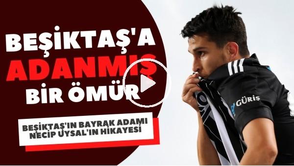 'Beşiktaş'a adanmış bir ömür: Necip Uysal'ın hikayesi