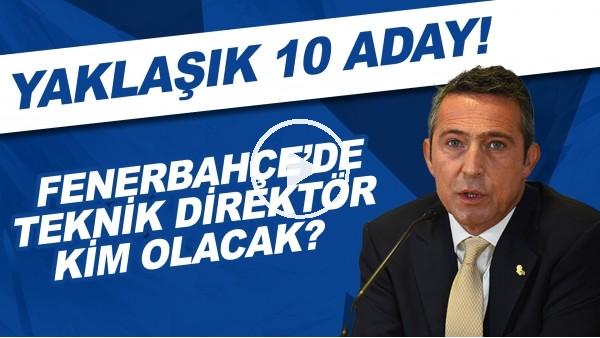 'Fenerbahçe'de teknik direktör kim olacak? | Yaklaşık 10 aday!