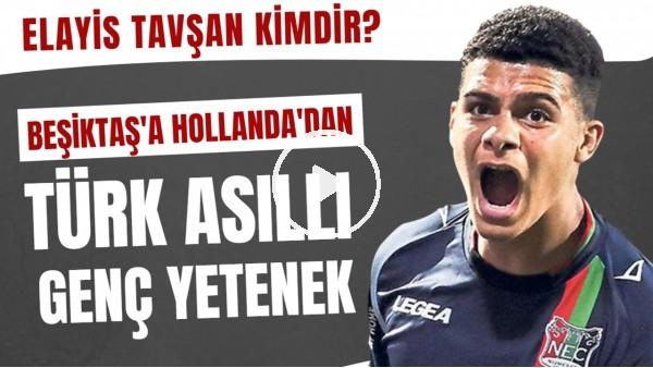 'Beşiktaş'ın ilgilendiği Elayis Tavşan kimdir? | Sol ayağını raket gibi kullanıyor